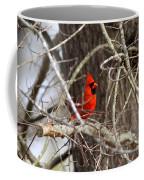 Img_0806 - Northern Cardinal Coffee Mug