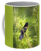 Img_0841-003 - Red-winged Blackbird Coffee Mug