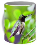Img_3524-002 - Ruby-throated Hummingbird Coffee Mug