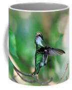 Img_4595-004 - Ruby-throated Hummingbird Coffee Mug