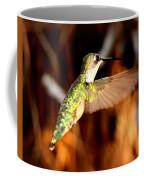 Img_4625 - Ruby-throated Hummingbird Coffee Mug