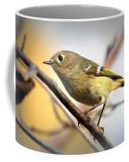 Img_5993 - Ruby-crowned Kinglet Coffee Mug