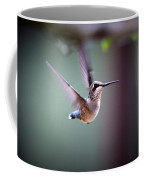 Img_8532 - Ruby-throated Hummingbird Coffee Mug