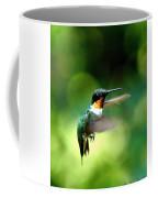 Img_9985-001 - Ruby-throated Hummingbird Coffee Mug