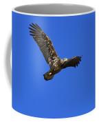 Immature Bald Eagle Fly By Coffee Mug