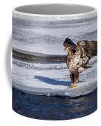 Immature Eagle On Ice Coffee Mug