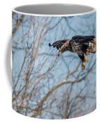 Immature Eagle Wheels Down Coffee Mug