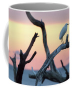 Immature Heron Glow Coffee Mug