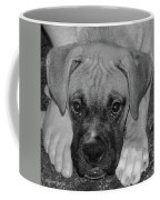Impawsible Coffee Mug
