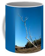 Implore Coffee Mug