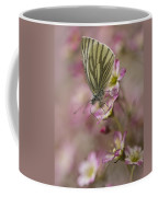 Impression With A Small Butterfly Coffee Mug