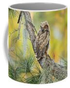 In Color Coffee Mug