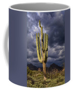 In Search Of That Perfect Saguaro  Coffee Mug