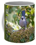 In The Catbird Seat Coffee Mug