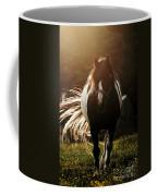In The Last Rays Of Setting Sun Coffee Mug