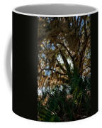 In The Shade Of A Florida Oak Coffee Mug