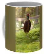 In The Springtime Coffee Mug