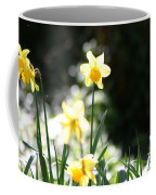 In The Springtime Sunshine Coffee Mug