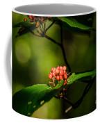 Vermont---in The Wild Coffee Mug