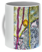 In The Woods And Swamps Coffee Mug