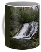 Indian Creek Falls 2 Coffee Mug