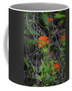 Indian Paint Brush 2 Coffee Mug