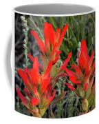 Indian Paintbrush Coffee Mug