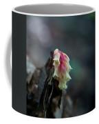 Indian Pipe 2 Coffee Mug