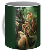 Indian Pipe 4 Coffee Mug
