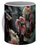 Indian Pipe 5 Coffee Mug