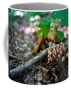 Indian Pipe 6 Coffee Mug