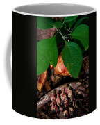Indian Pipe 7 Coffee Mug