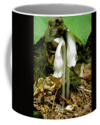 Indian Pipes - Monotropa Uniflora Coffee Mug