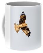 Indian Spotted Eagle Coffee Mug
