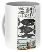 Indigenous Fish, Greenland, 18th Century Coffee Mug