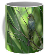Indigo Bunting - Felts Nature Preserve - Ellenton Florida Coffee Mug