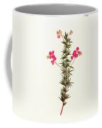 Indigo Plant Coffee Mug