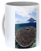 Indonesia, Coral Reef Coffee Mug