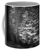 Infared Photograph Coffee Mug