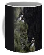 Ingolfshofthi Puffins Iceland 2898 Coffee Mug