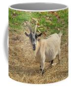 Inquisitive Goat Coffee Mug