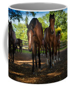 Inquisitive Horses Coffee Mug