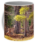 Inquisitive Whitetail Deer Coffee Mug