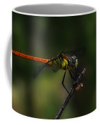 Insect 1 Coffee Mug
