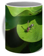 Insect On Lotus Leaf Coffee Mug