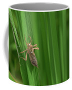 Insect Stain On The Leaf Coffee Mug