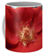 Inside The Rose Coffee Mug