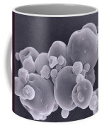 Instant Milk Powder Sem Coffee Mug