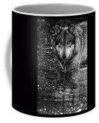 Intense Reflection Coffee Mug