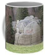 Interesting Rock Formation - Elephant Rocks Coffee Mug